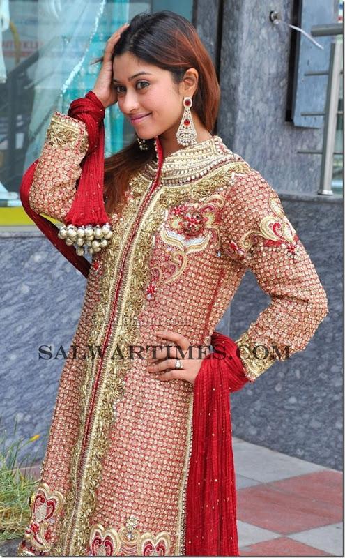 Payal_Gosh_Designer_Salwar_Kameez