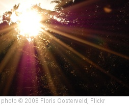 'Sunbeams' photo (c) 2008, Floris Oosterveld - license: http://creativecommons.org/licenses/by/2.0/