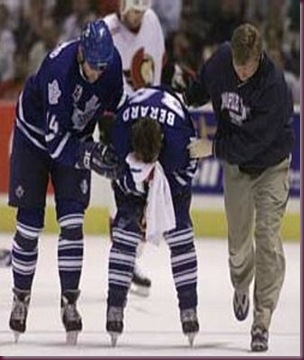 Berard_display_image