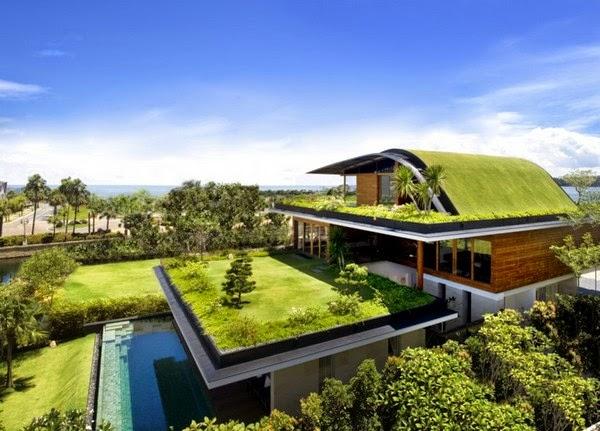 Sân thượng cỏ xanh