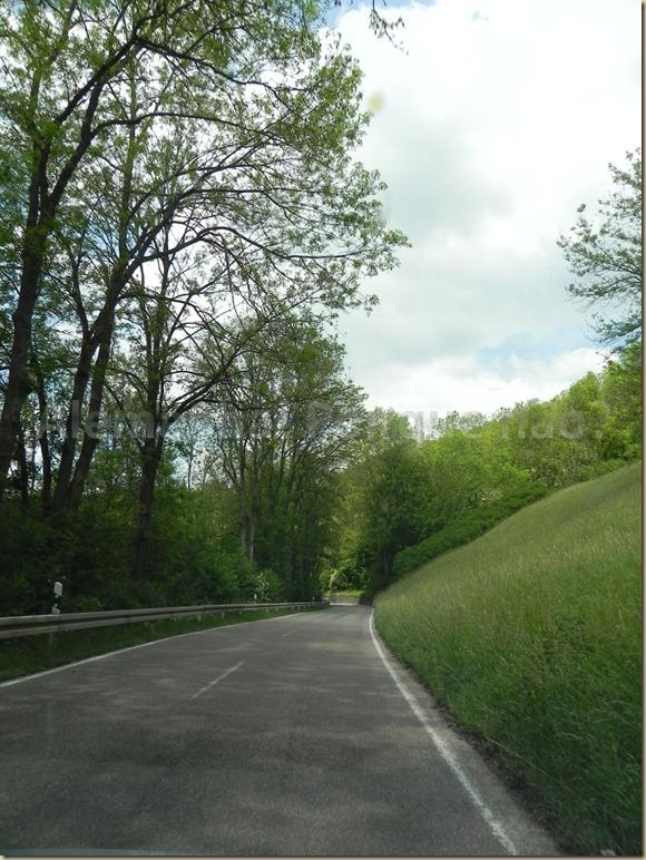 Estrada Romântica 13