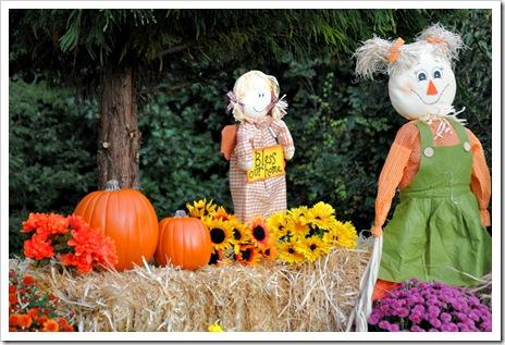 Emily Scarecrow