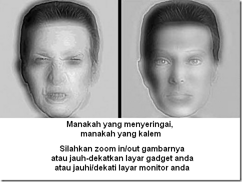 ambiguous-illision_www.dadanpurnama.com_24