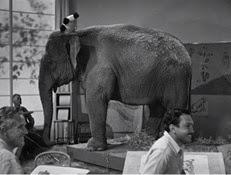 0-09 l'éléphant