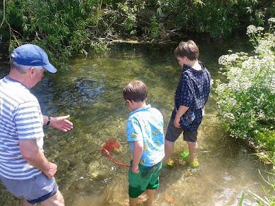 Summer activities for kids in Salisbury