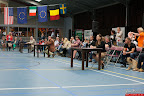 20130510-Bullmastiff-Worldcup-1346.jpg