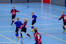 SEIZOEN 2013-2014 - WVV E2 - 15 FEB - WVV E2 - ZAALCOMPETITIE