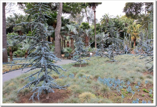 130403_Lotusland_Blue-Garden_12