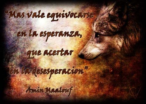 frase de lobo