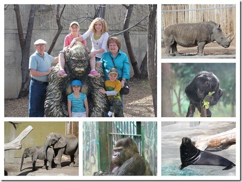 Zoo.1