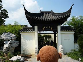 CM Bonsai #14 --- Chinese Pavilion