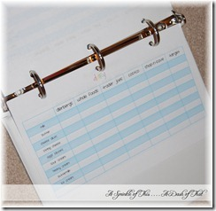 grocery shopping price comparison binder {A Sprinkle of This . . . . A Dash of That}