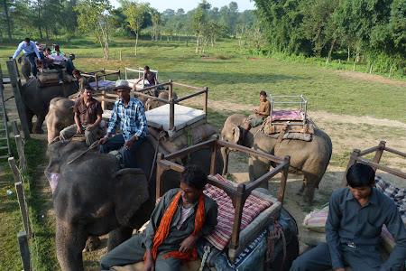 Statia de elefanti