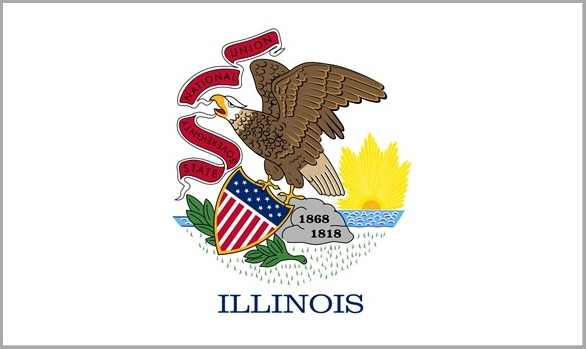 FLAG-Illinois