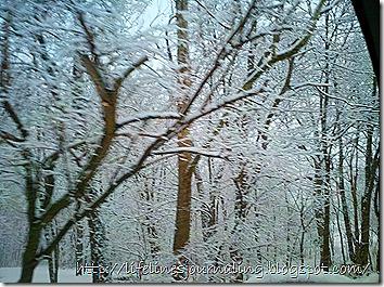 2012-02-19_17-18-11_546