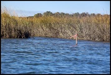 Botony Bay Kayak 081