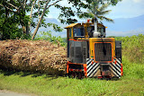 The Cane Train Headed To The Sugar Mill - Port Denarau, Fiji