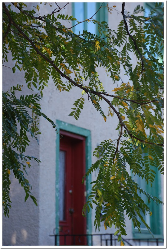 Red Door and Rowan