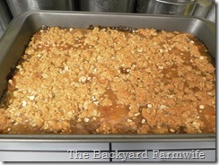 rhubarb bars - The Backyard Farmwife