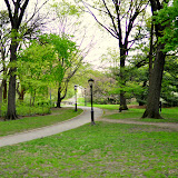 Central Park - Apr. 17th, 2010
