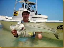 Captain David M. Rieumont holding a typical springtime snook (Robalo) from the Anclotte Key fishery.
