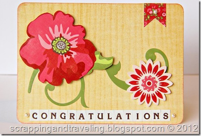 Echo Park Congratulations Card