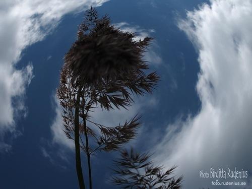 fisheye_20110716_sky2