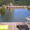 piscine bois modern pool 66.jpg