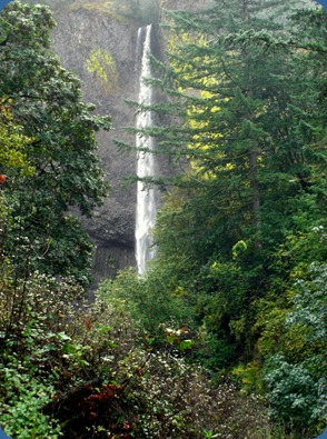Latourell Falls (1)