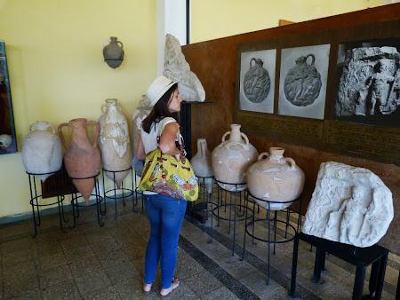 Cramele Murfatlar Muzeul Vinului
