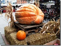 Ottawa Oktoberfest Pumpkin