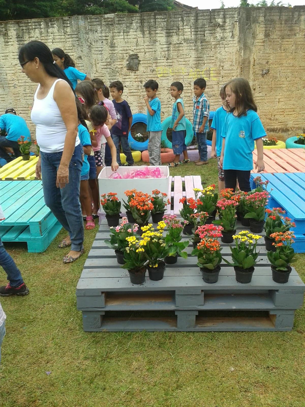 projeto horta e jardim na escolaEscola Judith PROJETO Horta