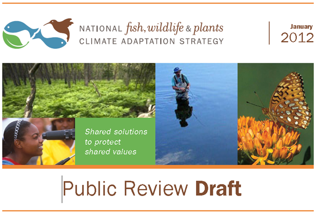 Cover of 'National Fish, Wildlife and Plants Climate Adaptation Strategy' public review draft, 2012. doi.gov