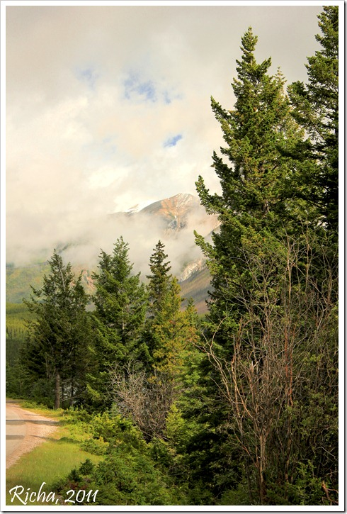 Banff_258_101