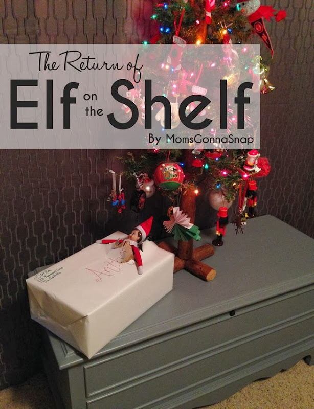 Elf on the Shelf Returns by MomsGonnaSnap