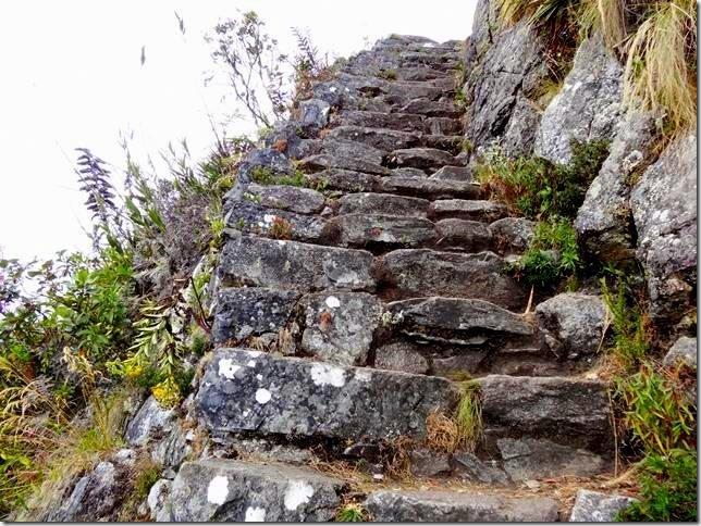 Machu_Picchu_DSC02160