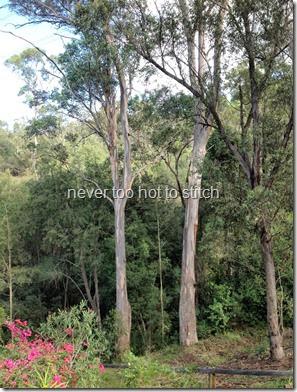 2014-05-02 trees