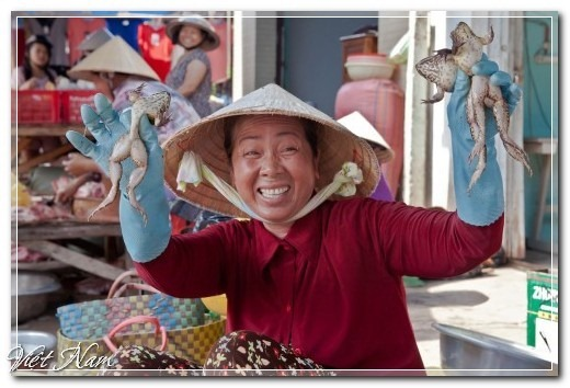 Việt Nam đẹp và... lạ dưới ống kính Yan Lerval