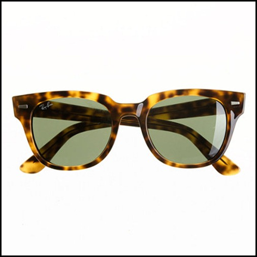 Ray Ban Meteor Sunglasses