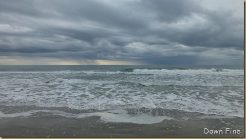 North beach  _157