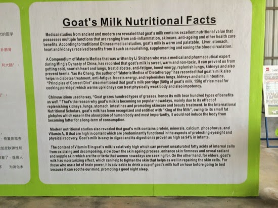 UK Farms - The benefits of goats' milk