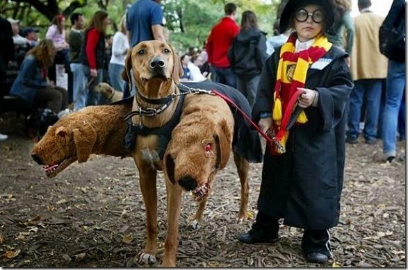 halloween-costumes-kids-22