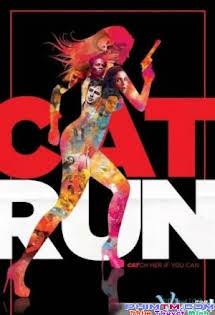 Cat Run - Cat Run