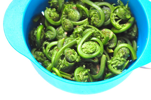 clean_fiddleheads