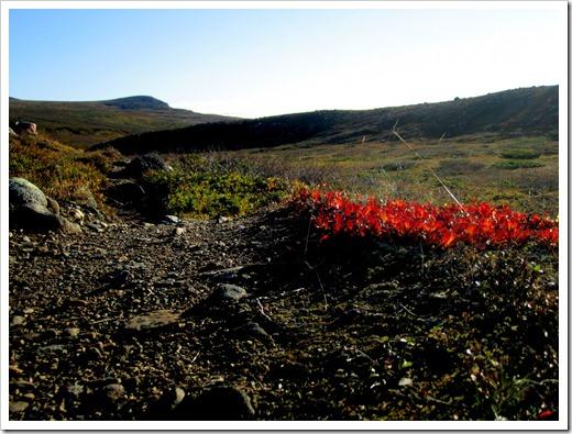 Men lite rött fanns det bredvid den mycket behagliga stigen.