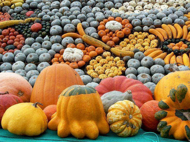 slindon-pumpkin-festival-4