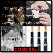 CONCEAL- 4 Pics 1 Word Answers 3 Letters