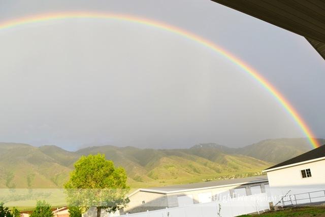 05-2013-Rainbow-3