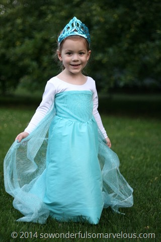 DIY Frozen Elsa Costume