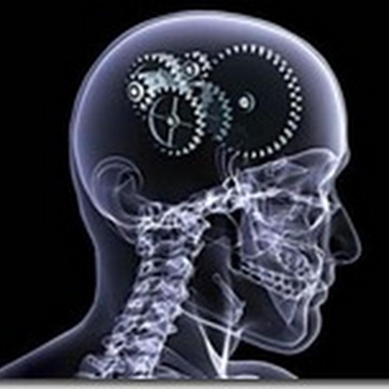 Cum funcţionează creierul uman ?